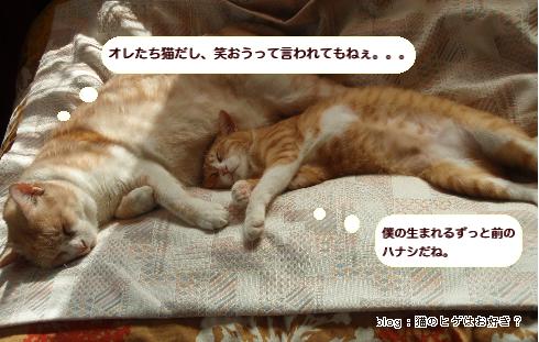 ニーとジン_3.jpg